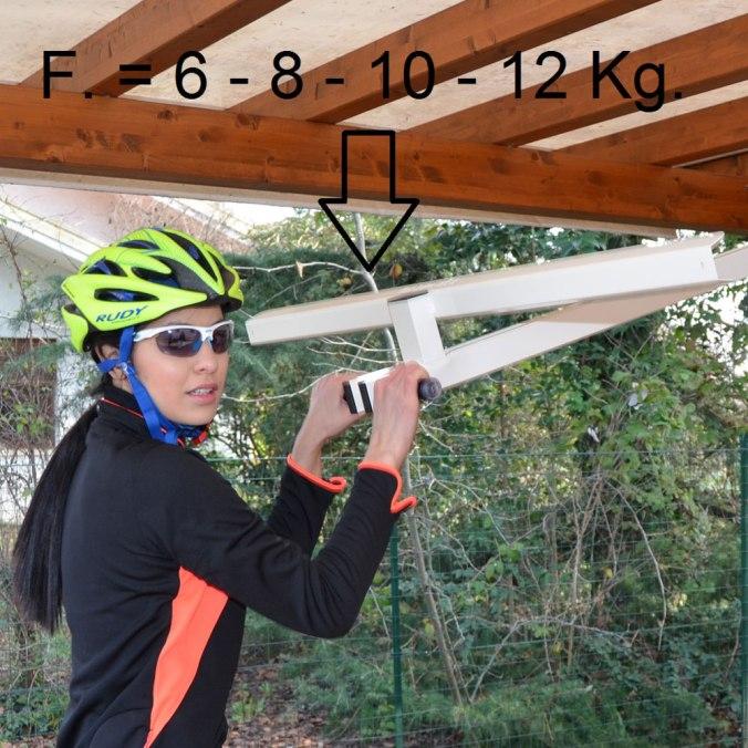 forze_flat-bike-lift